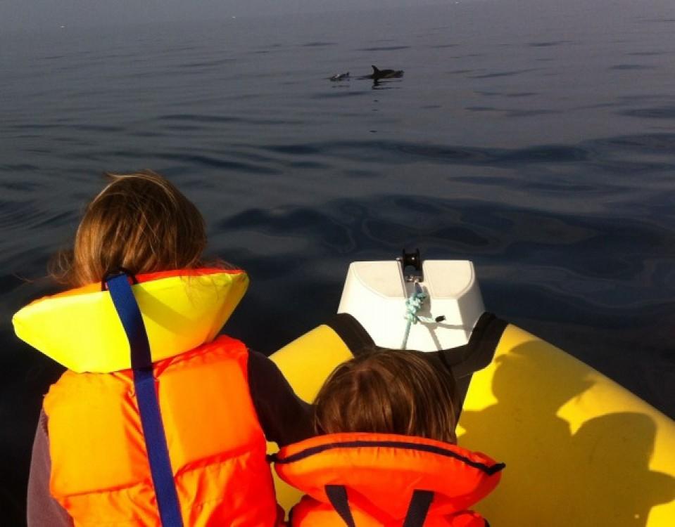 Jachthuur in Moëlan-sur-Mer - Searibs 580 open via SamBoat
