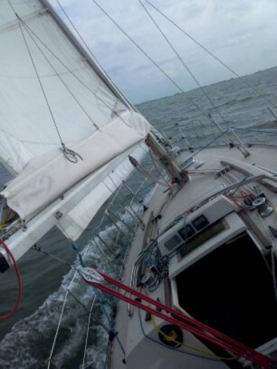 Verhuur Zeilboot in Reimerswaal - Bénéteau First 30