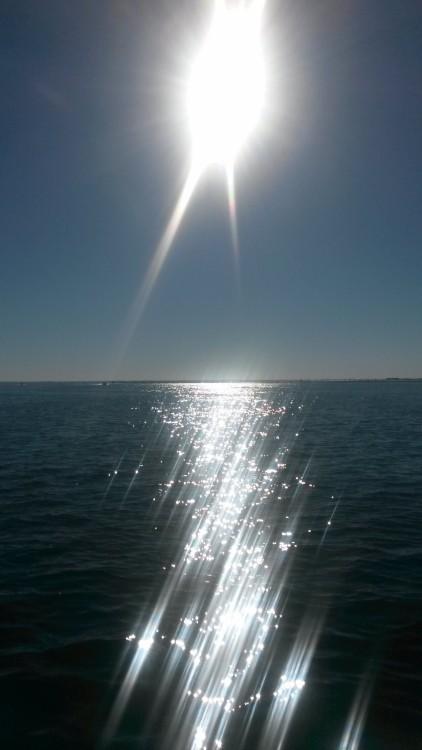 Jachthuur in Arcachon - Sessa Marine Key Largo 20 via SamBoat