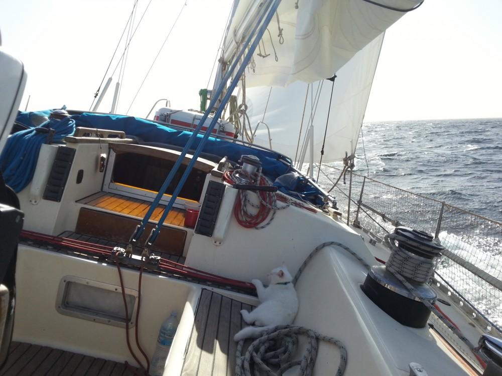 Jachthuur in La Rochelle - Jeanneau Sun Kiss via SamBoat