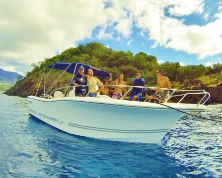 Jachthuur in Basse-Terre - Kelt White shark 226 via SamBoat