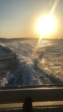 Huur een Solemar 28 offshore in Piombino