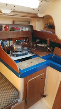 Neptune Trident 80 te huur van particulier of professional in La Grande-Motte