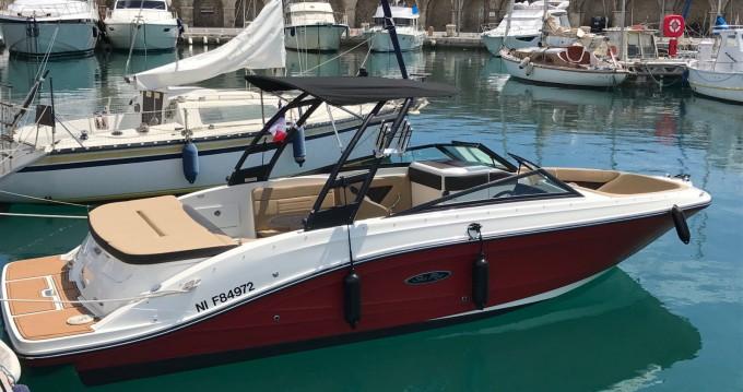 Verhuur Motorboot Sea Ray met vaarbewijs