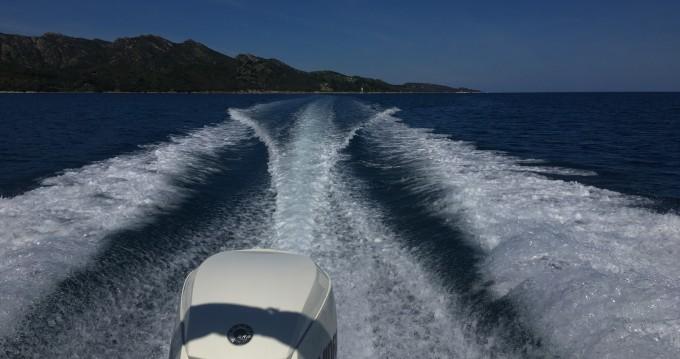 Huur een White Shark Sea Hawk 213 in Saint-Florent