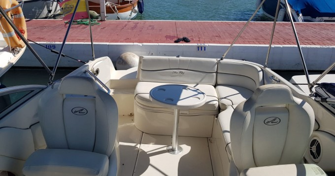 Jachthuur in Puerto Deportivo de Marbella - Sea Ray SUNDECK 240 via SamBoat