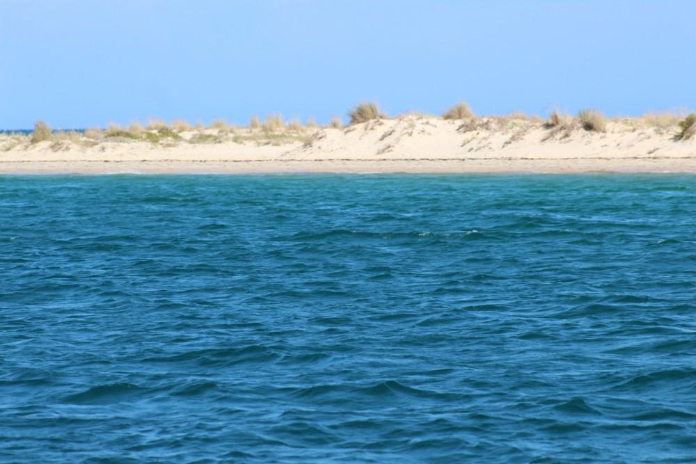 Bootverhuur Cranchi Mediterranee 41 in Faro via SamBoat