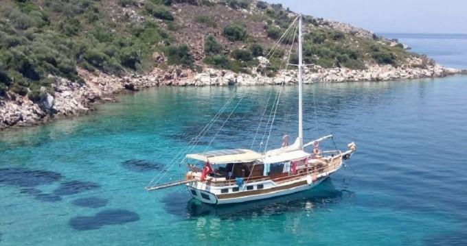Verhuur Zeilboot no brand met vaarbewijs