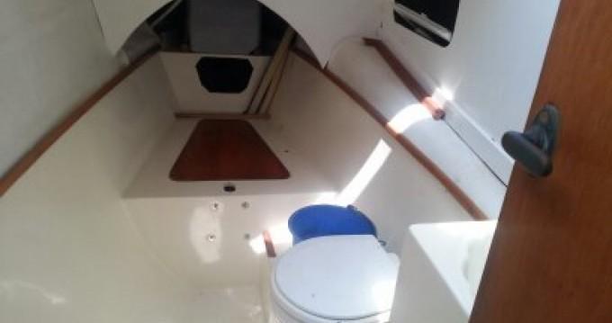 Verhuur Catamaran PROUT met vaarbewijs