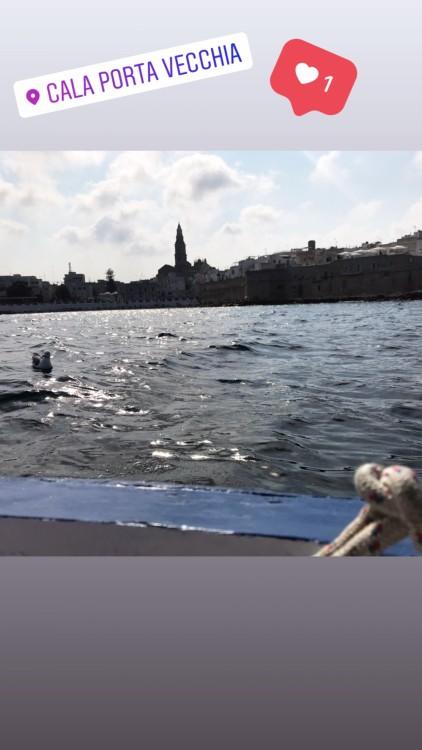 Huur Motorboot met of zonder schipper Cantiere Navale Monopoli in Monopoli