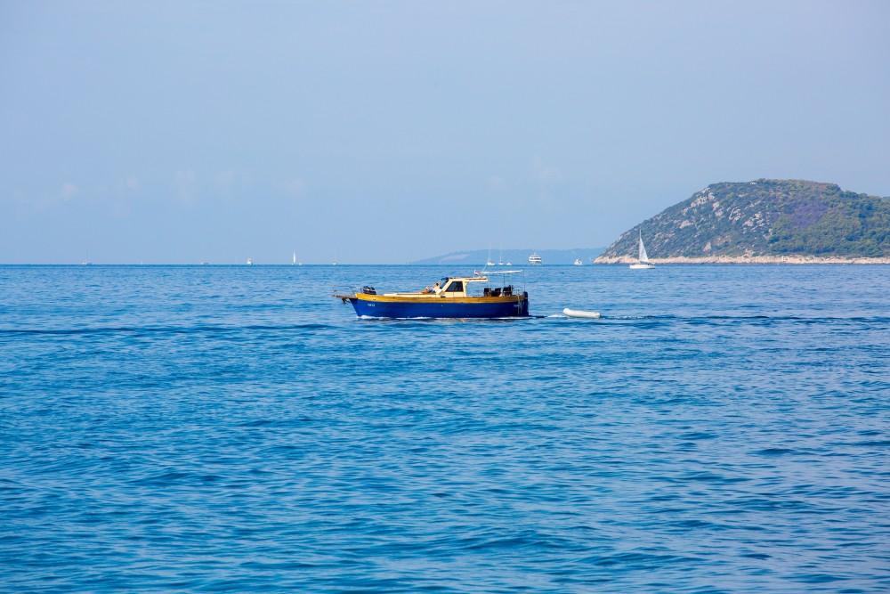 Huur Motorboot met of zonder schipper  in
