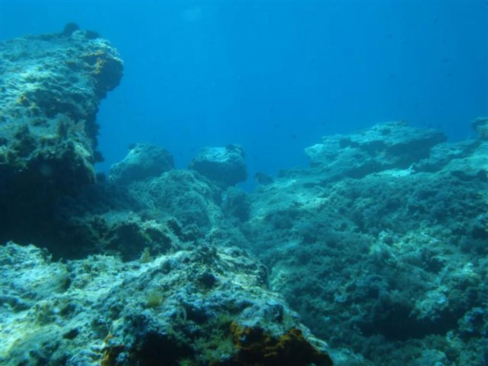 Huur Rubberboot met of zonder schipper Zodiac in Dubrovnik