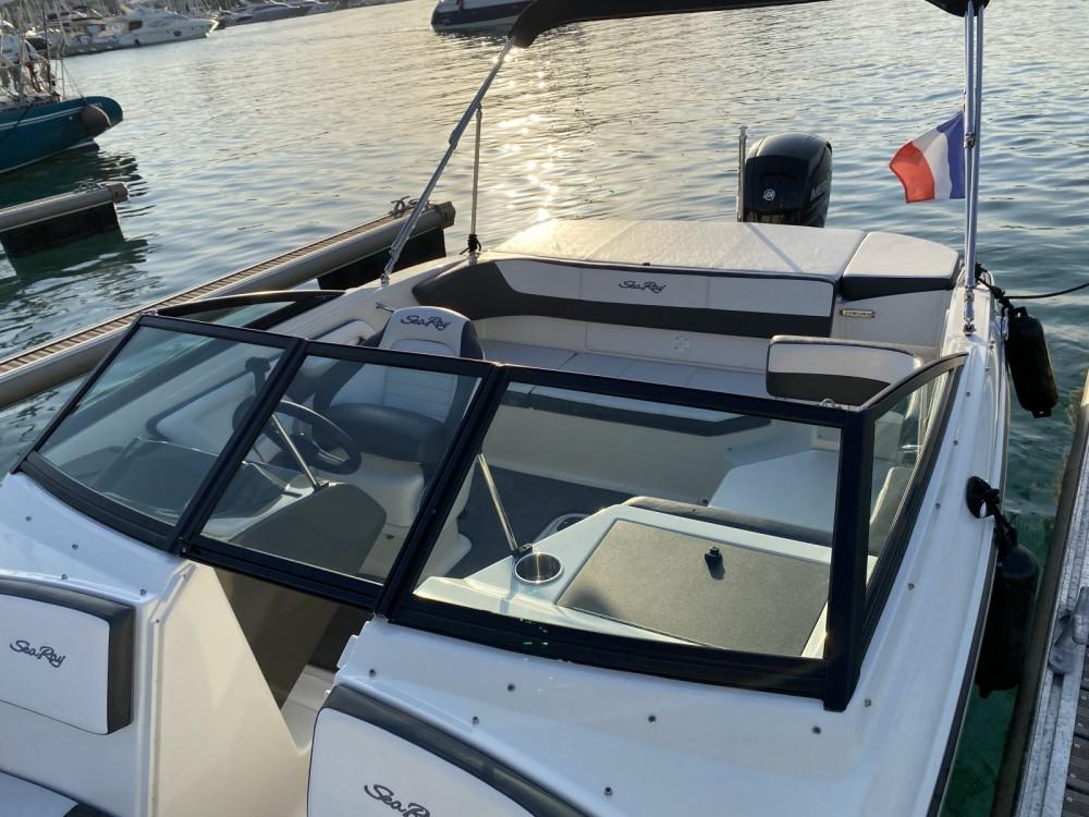 Sea Ray SPX 190 OB te huur van particulier of professional in Antibes