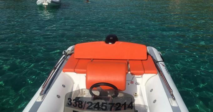 Verhuur Rubberboot MV Marine met vaarbewijs