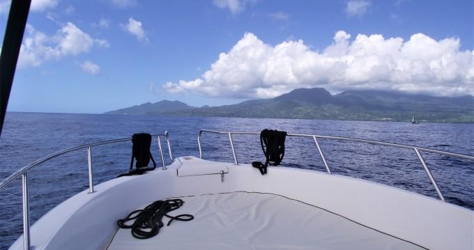 Bootverhuur Kelt White shark 226 in Basse-Terre via SamBoat