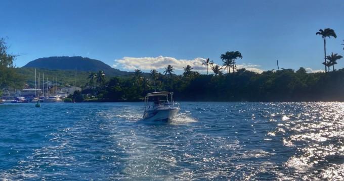 Jachthuur in Les Trois Îlets - Lobster marion 7,3 via SamBoat