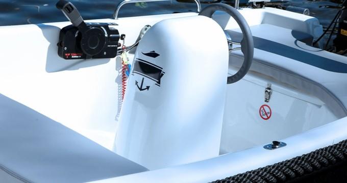 Verhuur Motorboot in Schwielowsee - Alfa 395